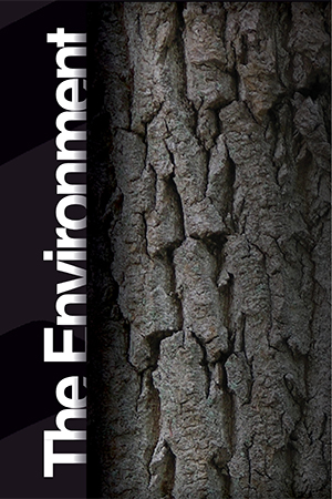 View our Environment Brochure